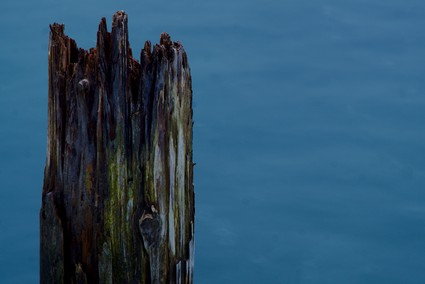 A rotten pier in lake Geneva